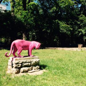 The pink panther im nordöstlichen Berlin (©Anne Schüchner)