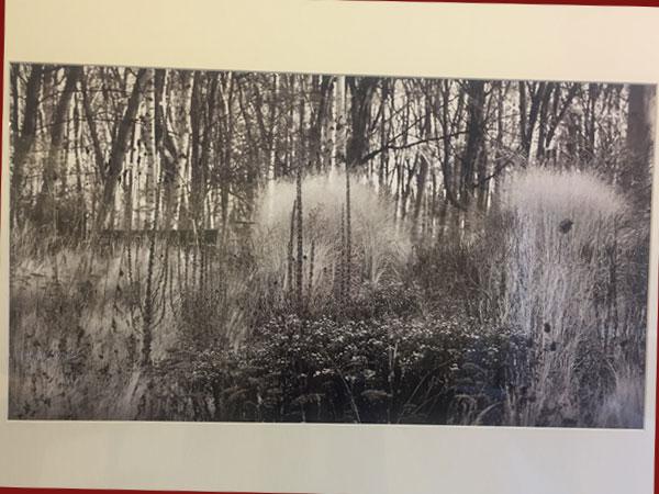 Winter/Pigmentdruck auf Barytpapier, 2019 (©Ingo Weckwerth)