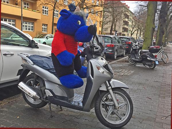 Plüschtier auf dem Motorroller (Foto: AS)